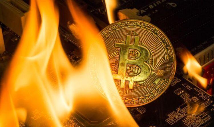 Bitcoin price crash: Cryptocurrencies plummet over bear market fears – Ethereum drops