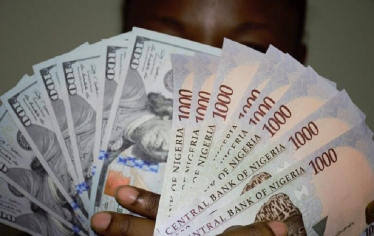 Exchange rate gains at official market as forex turnover rises by 165.8%